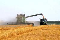 افزایش ۳۳درصدی تورم تولیدکننده بخش کشاورزی