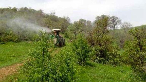 اختصاص ۱میلیارد تومان برای مبارزه با آفت جوانه خوار بلوط در جنگلهای زاگرس