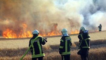آتشسوزی گسترده در جنگلهای گچساران