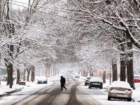 بهار برفی در آمریکا! +تصاویر