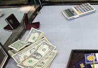 بازار ارز دلار باران شد
