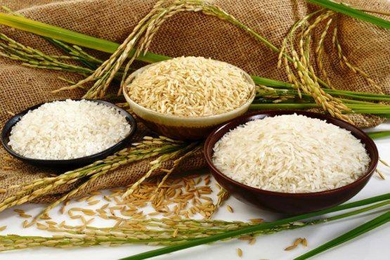 چرا قیمت تمامشده برنج ایرانی بالاست؟