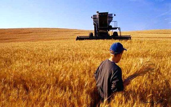 یارانه انرژی باز هم به کار مردم نیامد/ پشت پای کشاورزان به تامین نیاز داخلی گندم
