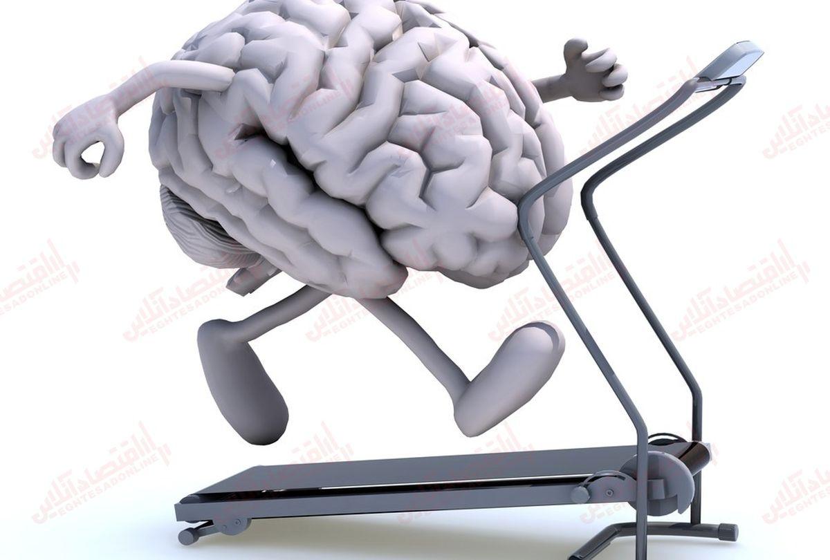 ۷ راه برای سالم نگه داشتن مغز