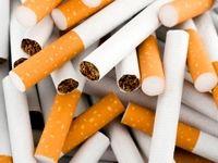 سازمان بهداشت جهانی: دخانیات به هر شکل و نوع مضر است