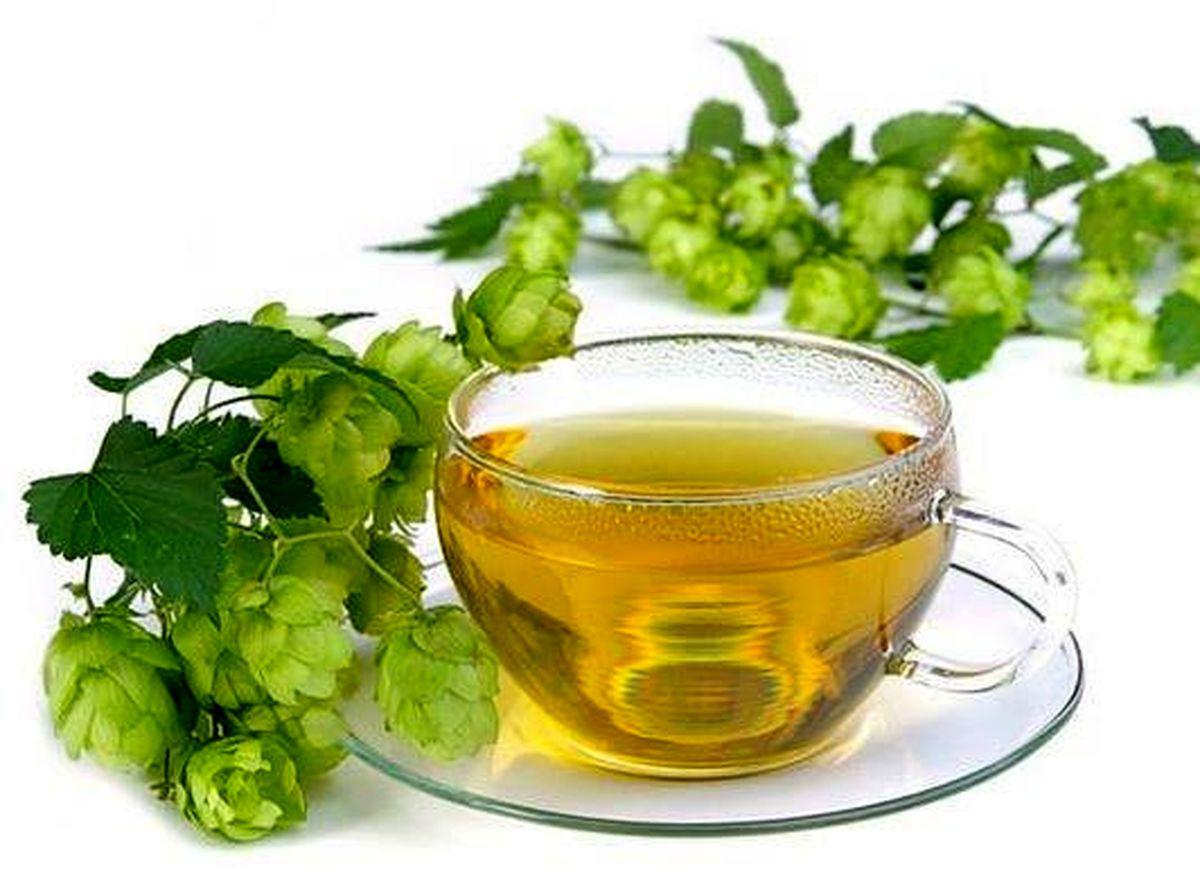 به این علل از گیاه رازک در انواع نوشیدنی ها استفاده می شود