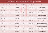 قیمت تور زمستانی دوبی +جدول
