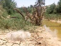 تجاوز به حریم رودخانه بهانه توجیه سدسازی/نادیده گرفتن توسعه پایدار علت وقوع سیلاب در پایین دست خوزستان است