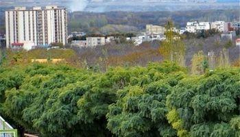 7500متر از باغات شهرداری منطقه5 رفع تصرف شد
