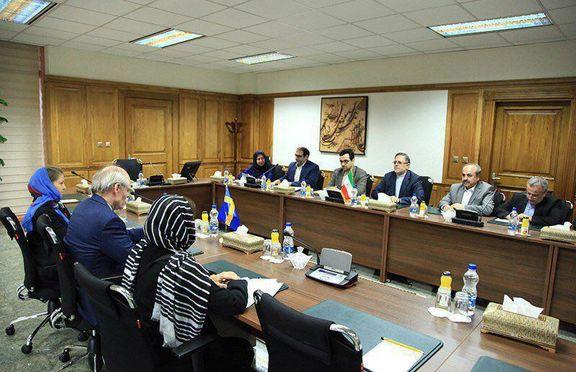 سیف: سوئد در نوسازی ناوگان حمل ونقل ایران مشارکت میکند/ گسترش روابط تجاری و بانکی ایران و سوئد