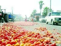 اشکها و گوجهها در جادههای هرمزگان!