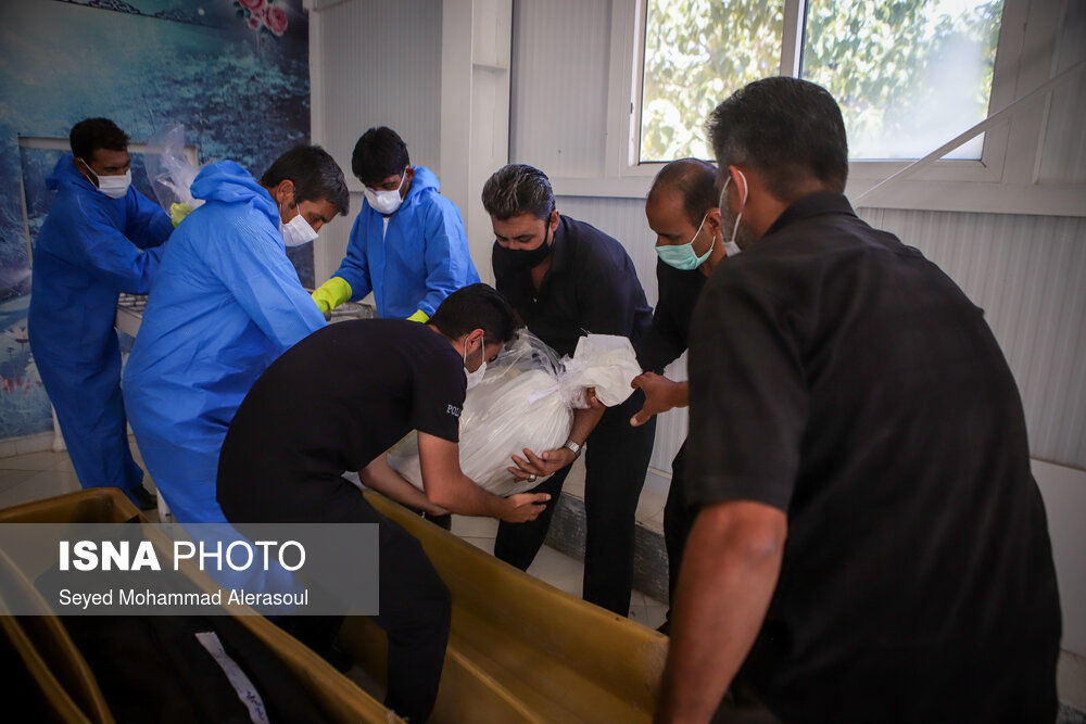 62003057_Seyed-Mohammad-Alerasoul-29-of-55-