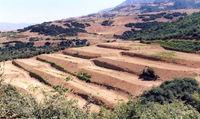 خسارت ۵۶میلیارد دلاری فرسایش خاک در ایران