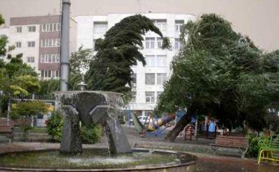 بارش پراکنده و وزش باد شدید در پایتخت پیشبینی میشود