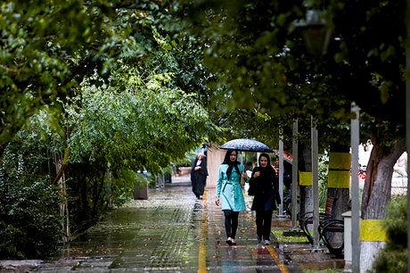 ارتفاع بارشها ۷۷ میلیمتری شد