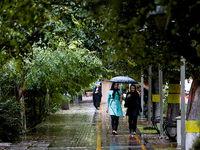 آغاز بارشها در غرب کشور از فردا