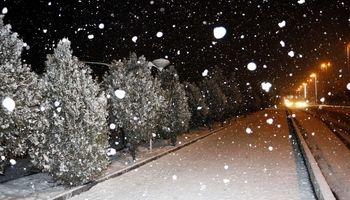 بارش برف مدارس اردبیل را به تعطیلی کشاند