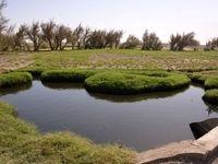 سرازیر شدن فاضلاب تهران به سمت مزارع جنوب