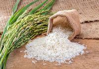شرط وزارت بهداشت برای واردات برنج