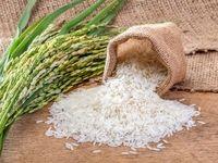 قیمت برنج هندی از مرز ۳۰ هزار تومان گذشت