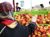 نرخ میادین میوه و تره بار ۱۳تا ۵۴درصد زیر قیمت سطح شهر