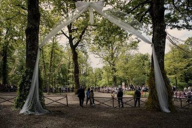 جشن ازدواج دو درخت