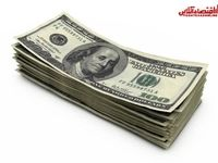 ثبات قیمت دلار روی ۱۵۶۰۰تومان