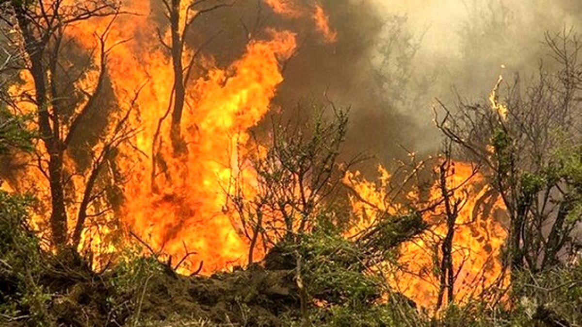 جنگلهای چوار همچنان در محاصره آتش