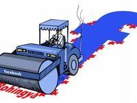 این هم خونبازی جدید فیسبوک! (کاریکاتور)