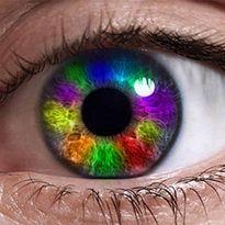کور رنگها دنیا را چگونه میبینند؟ +فیلم