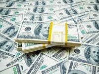 تعهد ارزی نباید لغو شود/ وقتی یارانه دولتی میگیرید باید ارز را به کشور بازگردانید