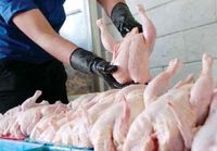قیمت مصوب مرغ گرم در تهران ۲۰۴۰۰تومان است