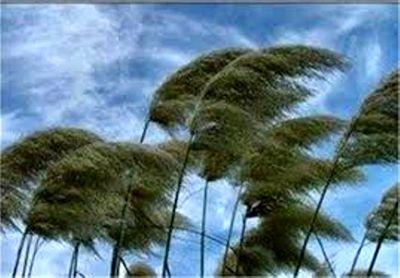 پیشبینی وزش باد در پایتخت