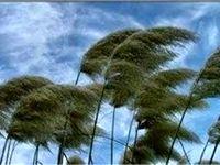 وزش باد شدید در تهران طی امروز