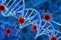 درمان تمام سرطانها ممکن میشود؟