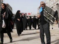 زائرین اربعین حسینی آماده حرکت از نجف به کربلا +عکس