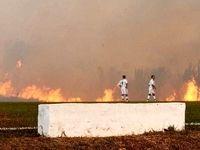 آتشسوزی جنگلهای آمازون بازی فوتبال را متوقف کرد +فیلم