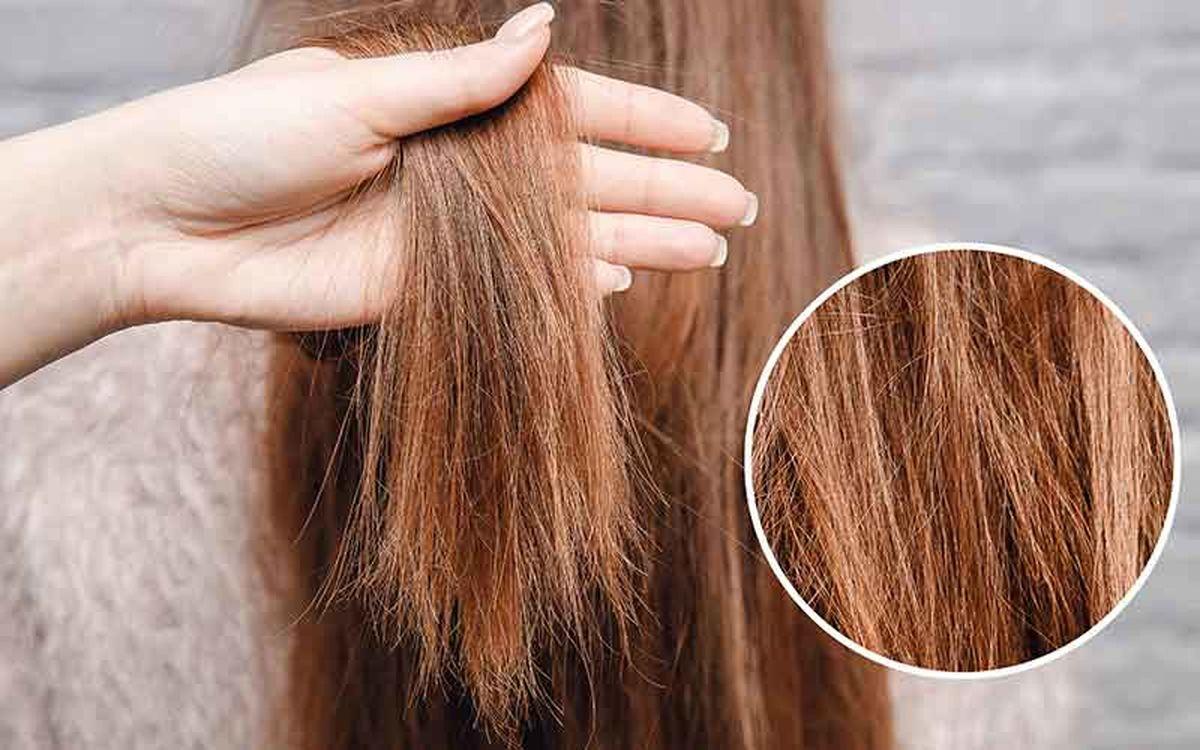 راهکارهای ساده و طلایی برای موهای آسیب دیده