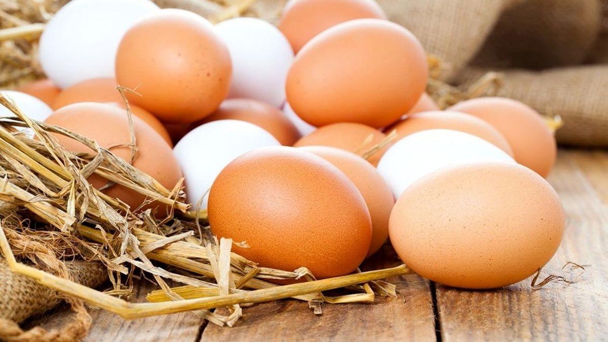 قیمت هرشانه تخم مرغ به بیش از ۵۰هزار تومان رسید