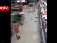 شکستن آکواریوم فروشگاه ماهی +فیلم