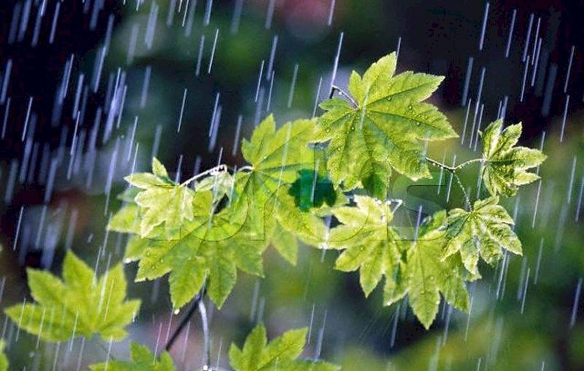 پیشبینی بارندگی بیش از حد