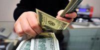 ارز ۴۲۰۰تومانی در بودجه سال آینده حذف میشود؟