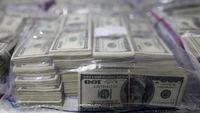 نیامدن دلارهای صادراتی تقصیر نیماست!