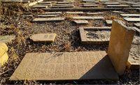 قبرستان تاریخی دارالسلام شیراز +عکس