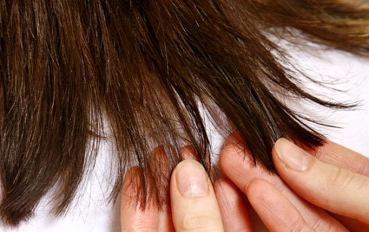چگونه موهای خود را تقویت کنیم که سریعتر بلند شود؟