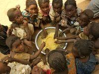 افزایش پانزده درصدی گرسنگان در جهان