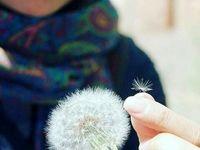 چند دلیل کوچک برای خوشبختی