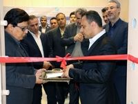 یازدهمین صندوق امانات بانک توسعه تعاون در بندرعباس افتتاح شد