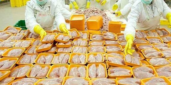 4 درصد؛ افزایش یک ساله قیمت مرغ