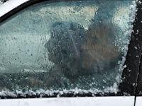 توصیهها درباره وزش باد شدید و بارش تگرگ در تهران